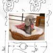 Patrón de abrigo para caniche